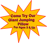 Jellystone Park Jumping Pillow